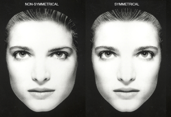 Facial Symmetry And Beauty 36