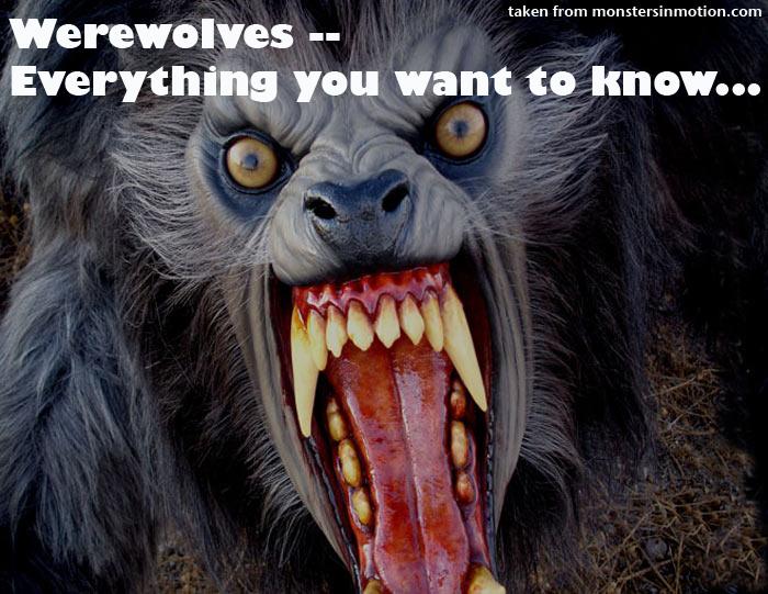 Celtic Symbol For Werewolf | New Tattoo